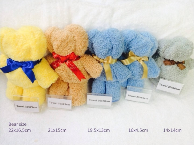 Towel Bear Gift Set 5